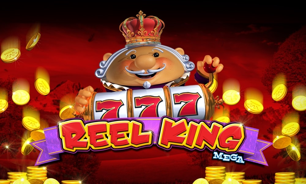 Everything There is to Know About Reel King Mega